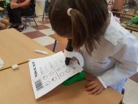 PROYECTO INFACIENCIA   El alumnado cordobés de Educación Infantil conoce la  química a través de científicas históricas